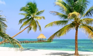 Hotels in Belize City