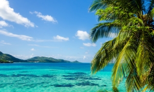 Hotels in Marigot