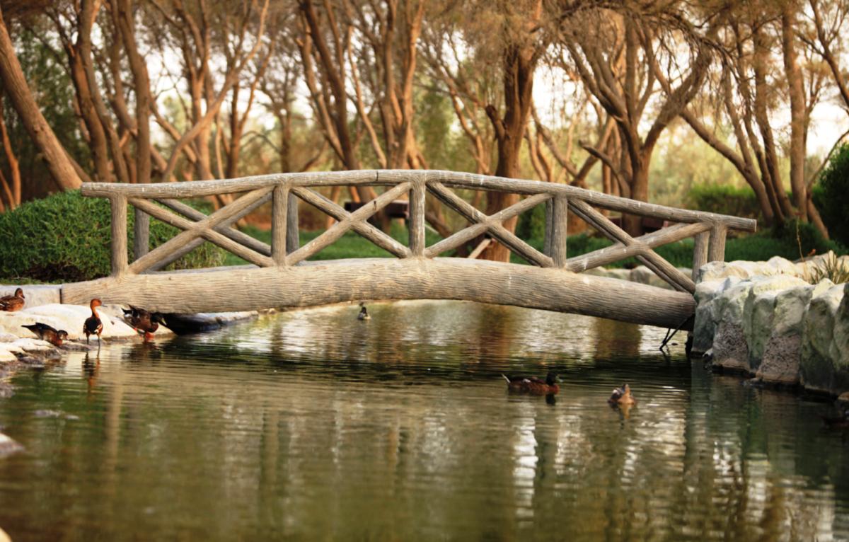 Национальный парк Аль-Арин